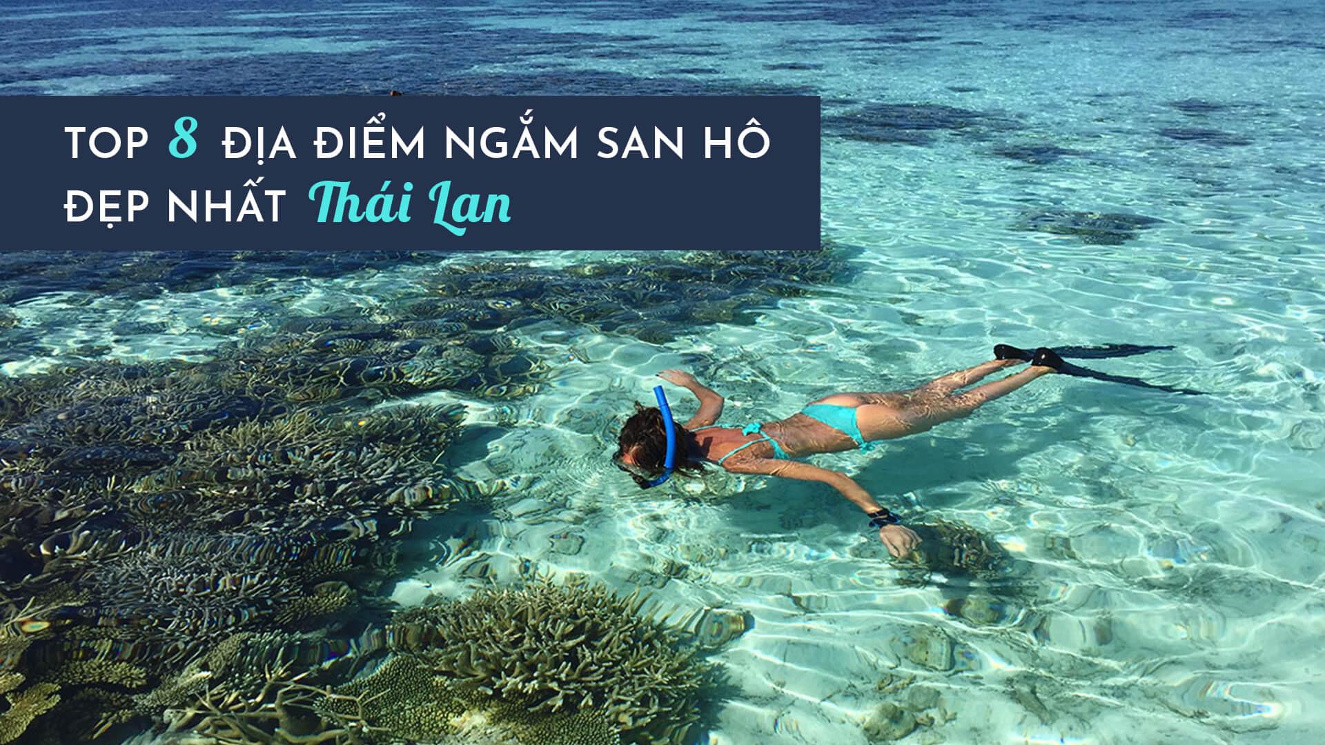 Top 8 địa điểm ngắm san hô đẹp nhất ở Thái Lan