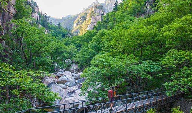 Lựa chọn tour du lịch Hàn Quốc tháng 6 để khám phá nhiều cảnh đẹp thiên nhiên