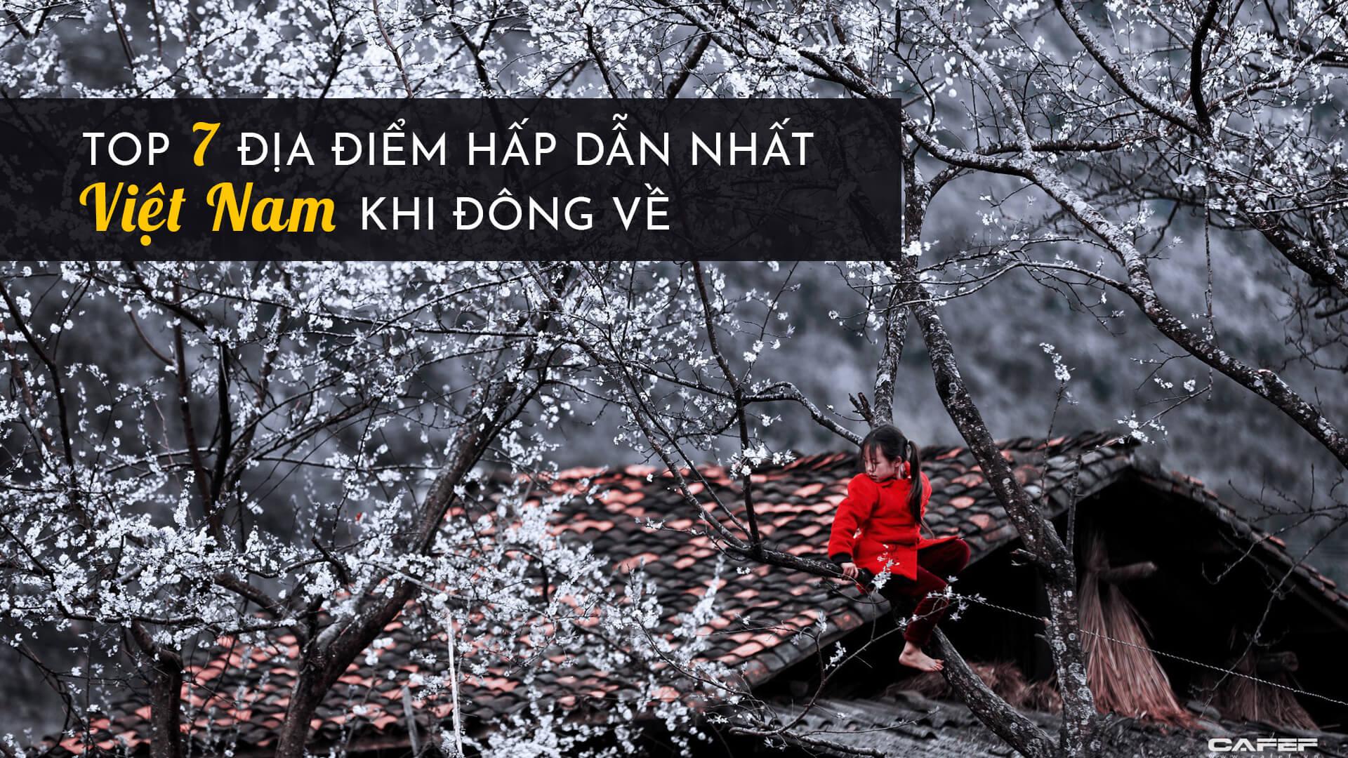 Top 7 địa điểm du lịch hấp dẫn nhất Việt Nam khi đông về
