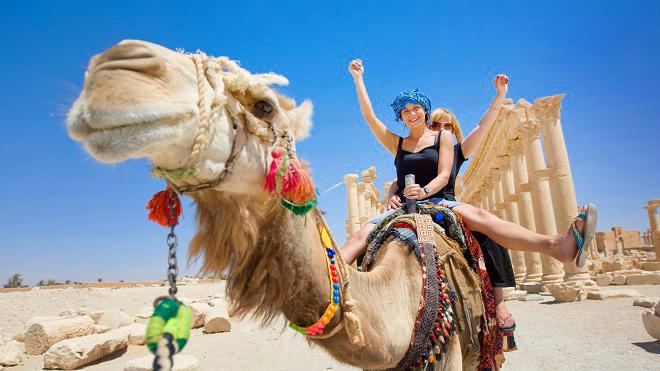 Số phận bi thảm của lạc đà ở Ai Cập: Chở khách 20h/ngày, già chết bị xẻ thịt. 2