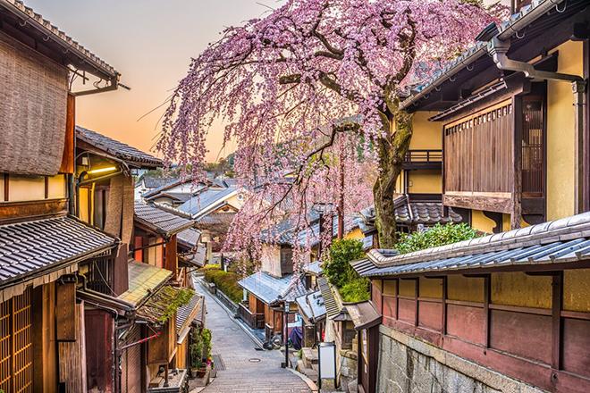 Cố đô Kyoto là thủ đô của Nhật Bản tới năm 1868 mới chuyển giao cho Tokyo như bây giờ. Ảnh: Telegraph