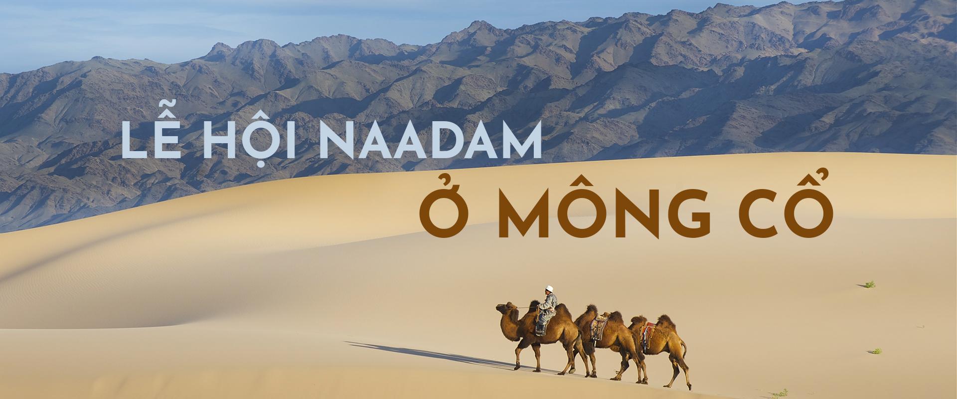 Đi du lịch Mông Cổ: Khám phá lễ hội Naadam