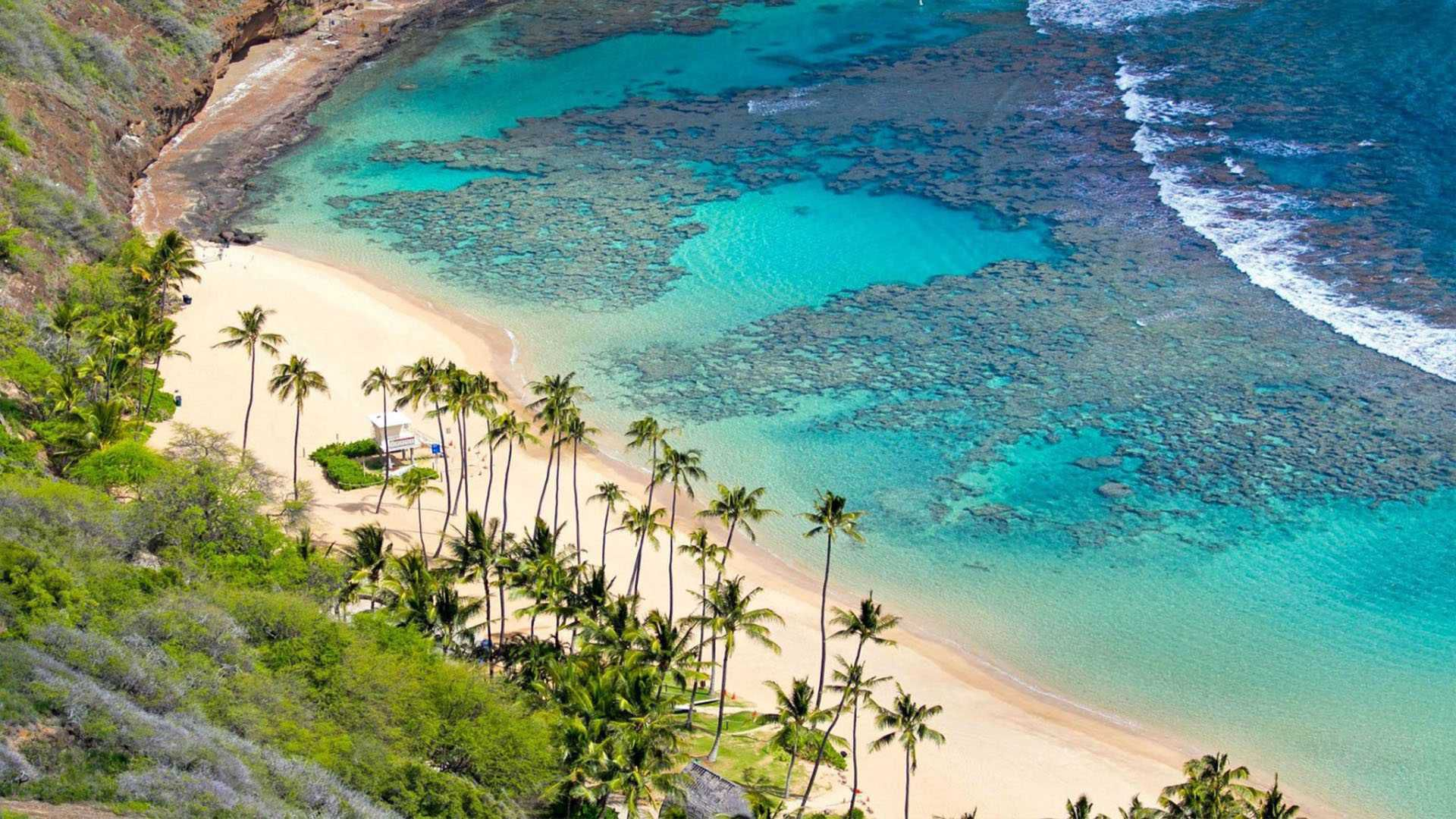 Cù lao Chàm nước trong xanh là nơi tuyệt vời để thư giãn trong những ngày hè nóng bức. Ảnh: Internet