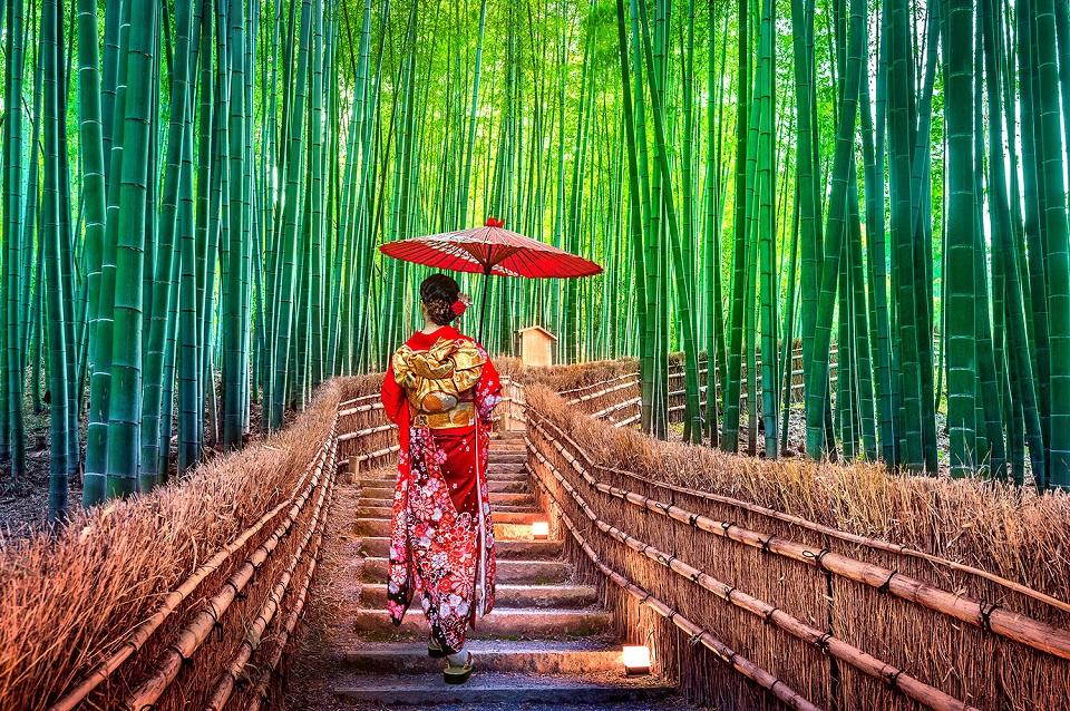 Đừng quên diện kimono để sống ảo ở rừng tre Arashiyama, hay còn gọi là rừng Sagano. Ảnh: OYAKATA