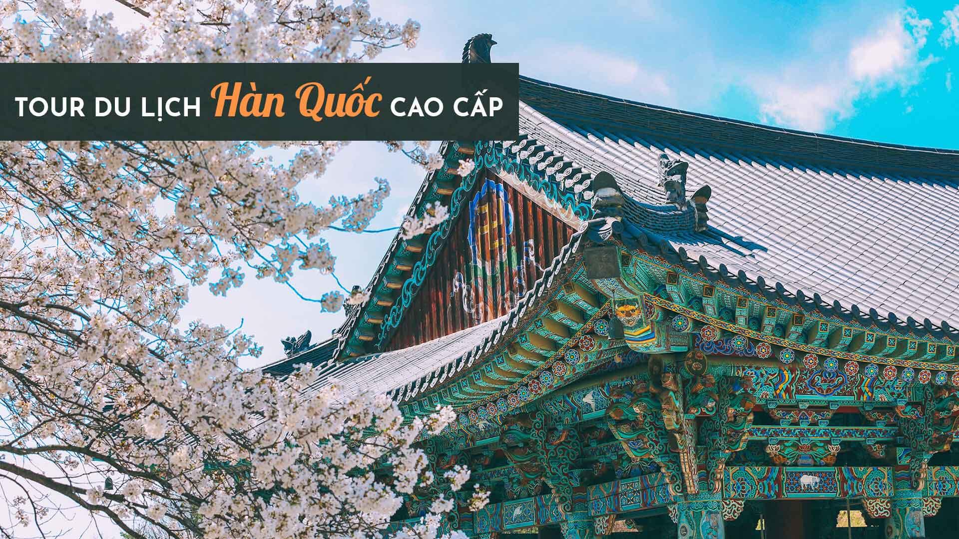 Tour du lịch Hàn Quốc cao cấp, dịch vụ chất lượng