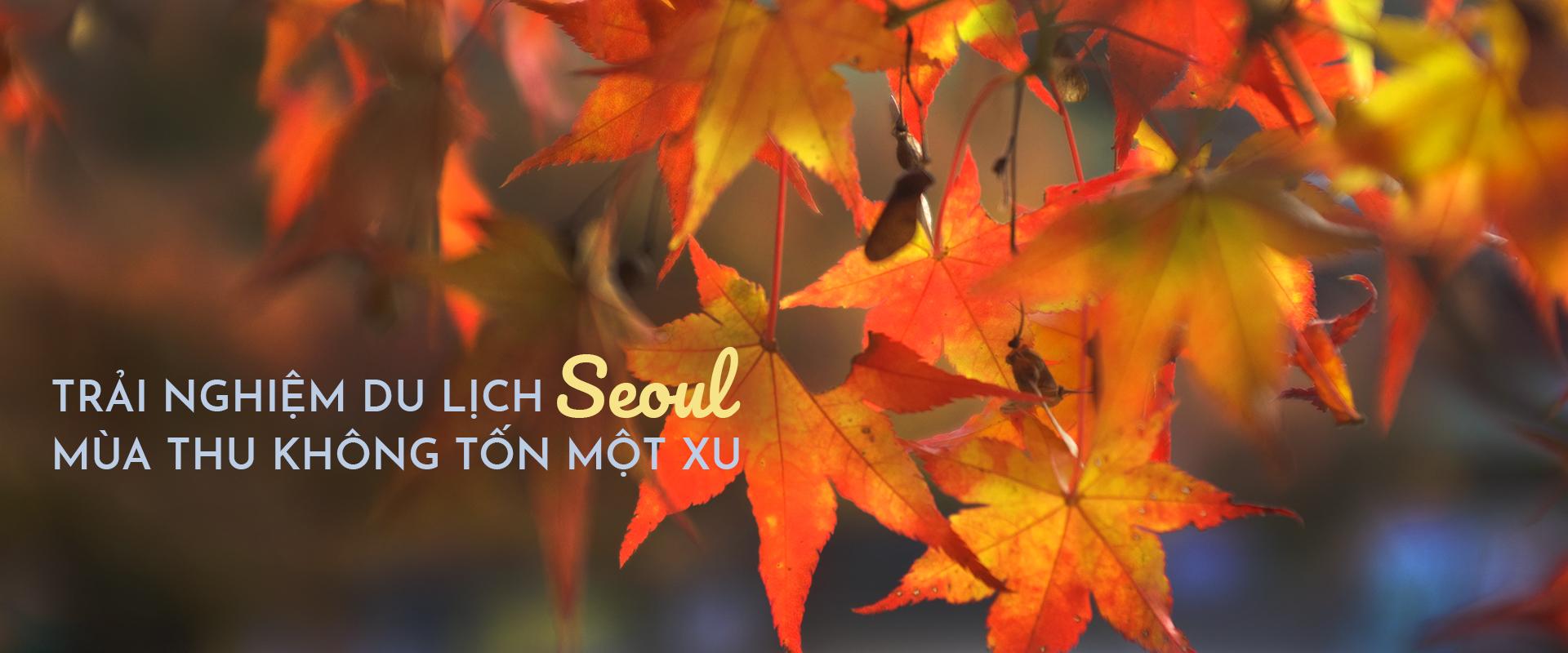 24h trải nghiệm Seoul không tốn một xu khi du lịch bụi ở Hàn Quốc